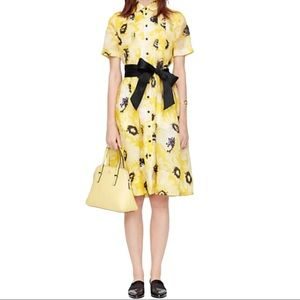 Kate Spade Sunny Daisy Organza Shirt Dress SZ 10